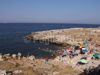 xspiagge-polignano-a-mare.jpg.pagespeed.ic.NF6CF27Ebi